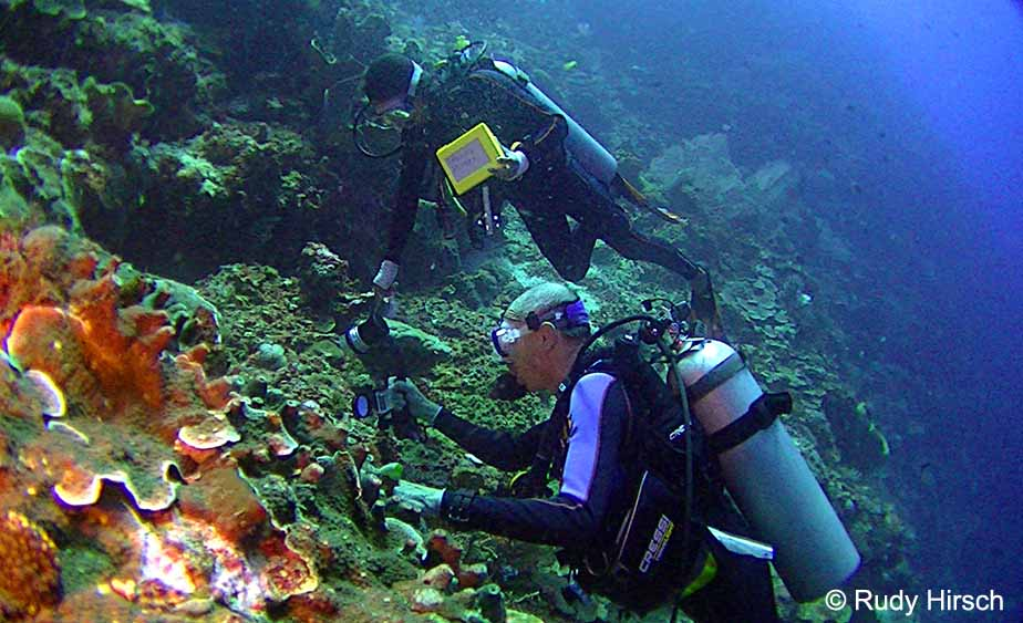 Finding my manado roots and discovering a passion for - Bunaken island dive resort ...